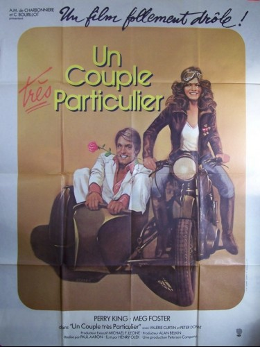 Affiche du film COUPLE TRES PARTICULIER (UN) - A DIFFERENT STORY