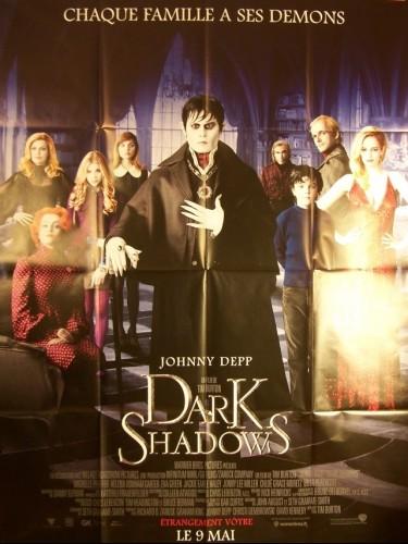 Affiche du film DARK SHADOW