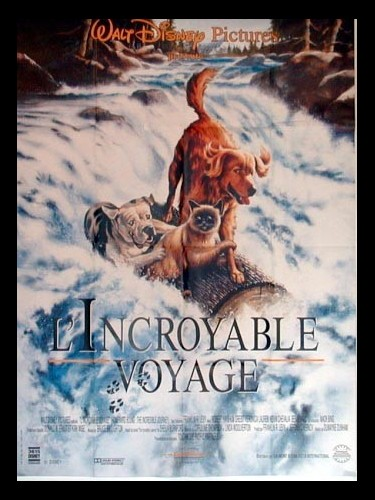 Affiche du film INCROYABLE VOYAGE (L') - HOMEWARD BOUND: THE INCREDIBLE JOURNEY
