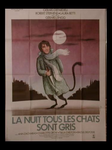 Affiche du film LA NUIT TOUS LES CHATS SONT GRIS