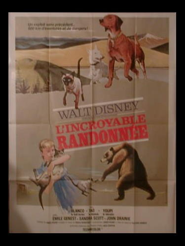 Affiche du film L'INCROYABLE RANDONNEE - THE INCREDIBLE JOURNEY