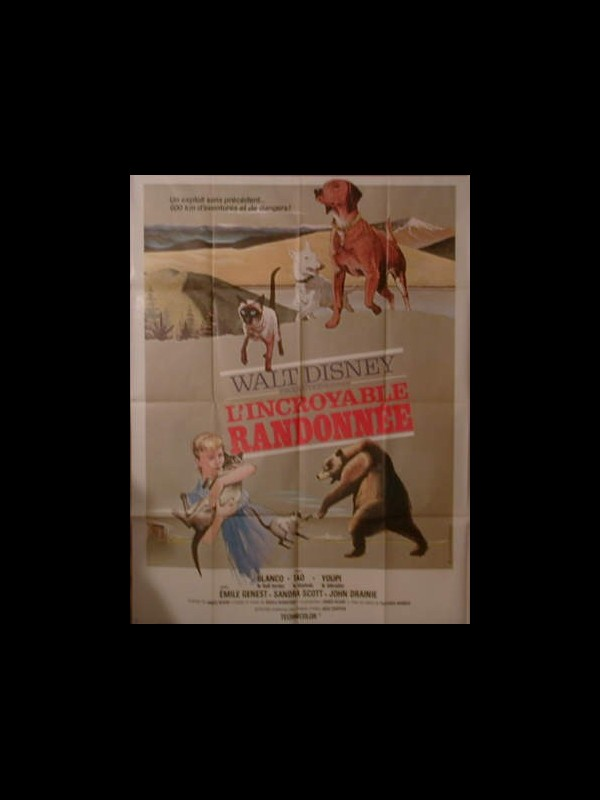Affiche du film L'INCROYABLE RANDONNEE - THE INCREDIBLE JOURNEY