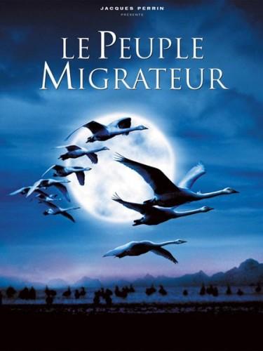 Affiche du film PEUPLE MIGRATEUR (LE)