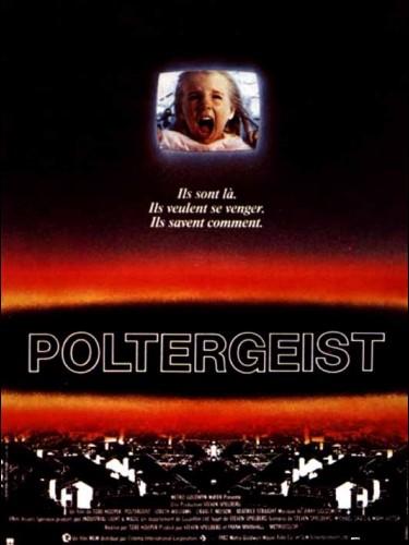 Affiche du film POLTERGEIST - POLTERGEIST