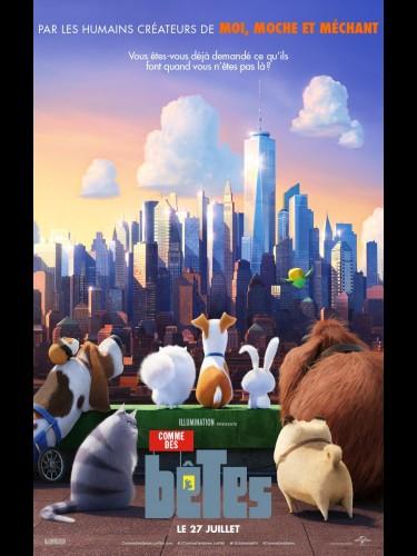 Affiche du film COMME DES BETES