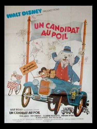 Affiche du film CANDIDAT AU POIL (UN)