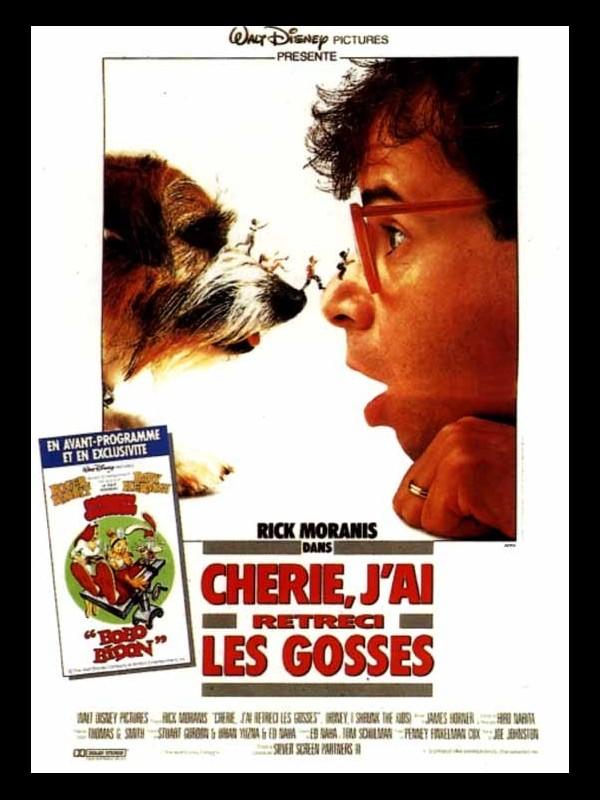 Affiche du film CHERIE, J'AI RETRECI LES GOSSES - HONEY, I SHRUNK THE KIDS